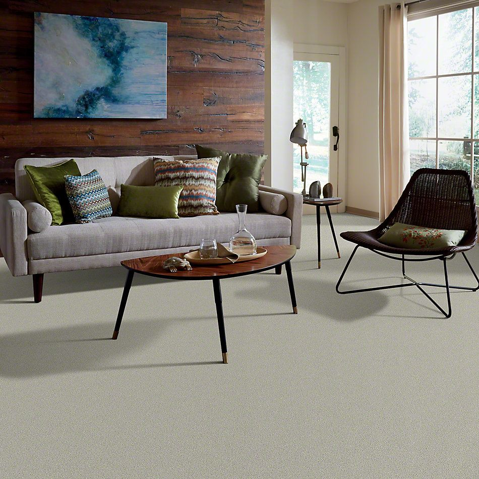 Shaw Floors Simply The Best Montage II River Rock 530A_5E082