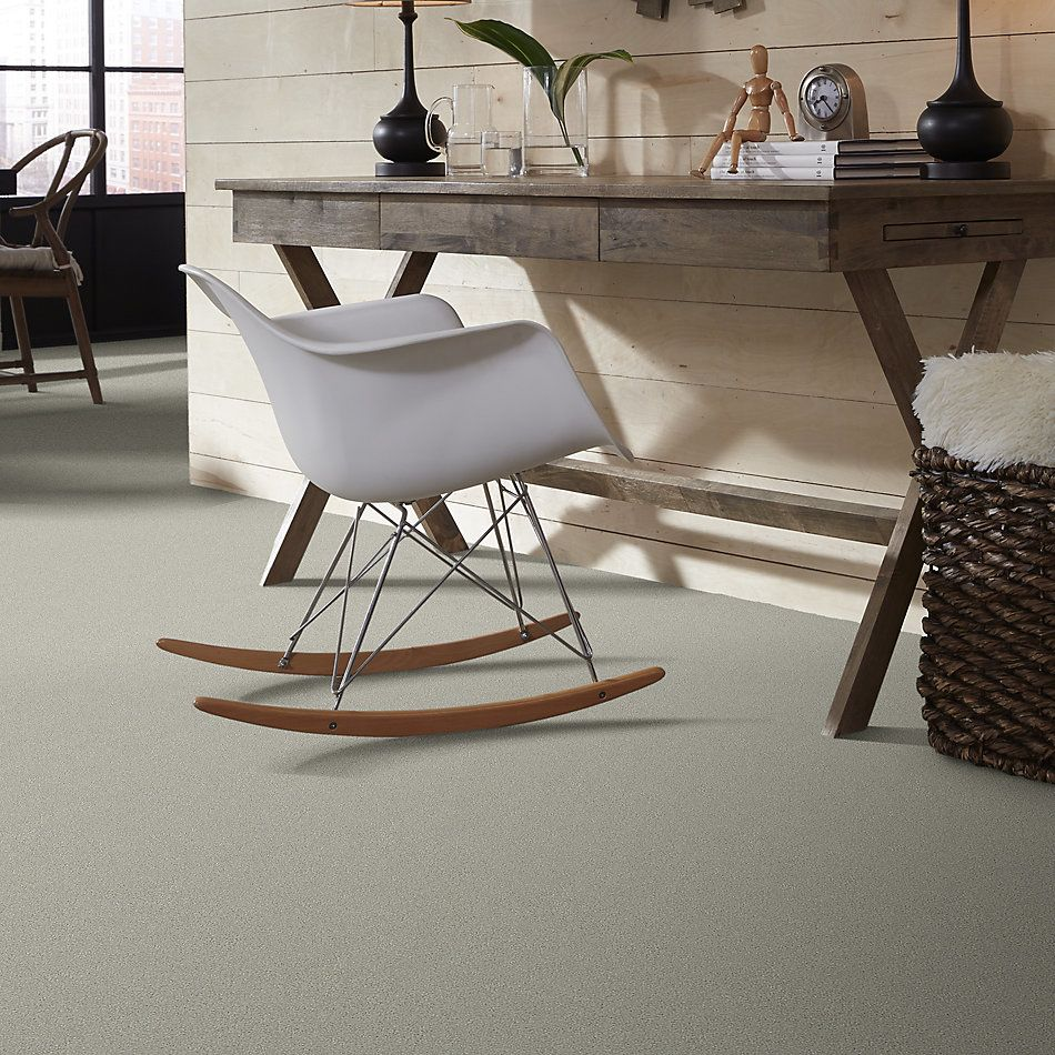 Shaw Floors Simply The Best Montage II Net River Rock 530A_5E099