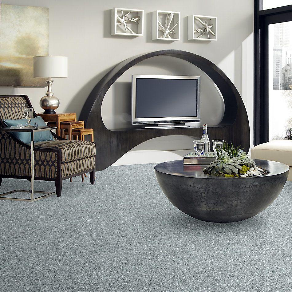 Shaw Floors SFA Fyc Tt Blue Net Polished Silver (t) 538T_5E023