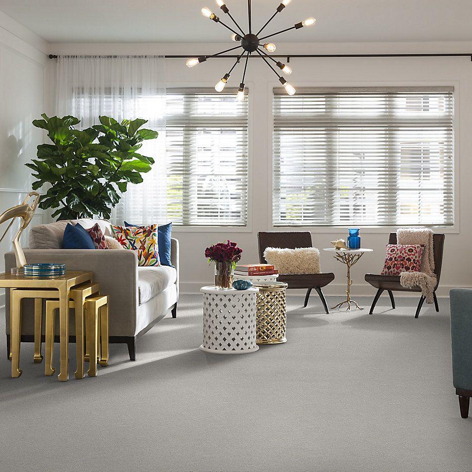 Shaw Floors SFA Fyc Ns I Net Morning Dew (s) 539S_5E018