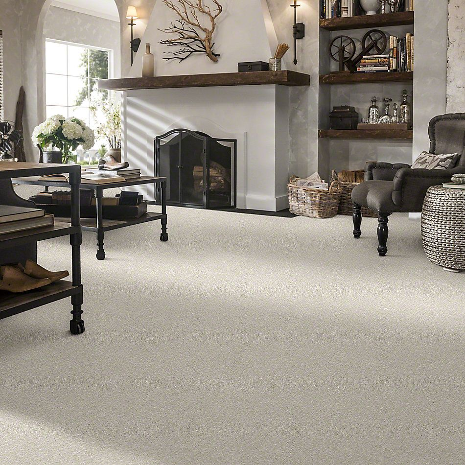 Shaw Floors Value Collections Newbern Classic 15′ Net Taupe 55105_E9199