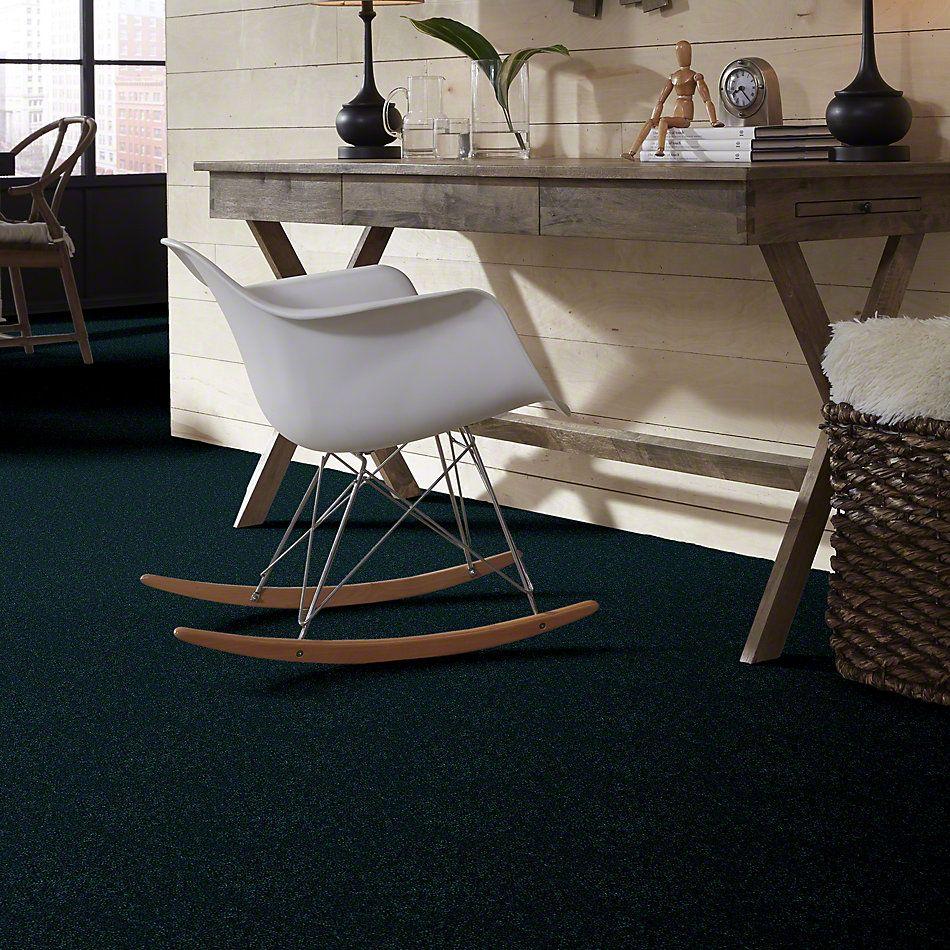 Shaw Floors Freelance 15′ Polo 55301_53856