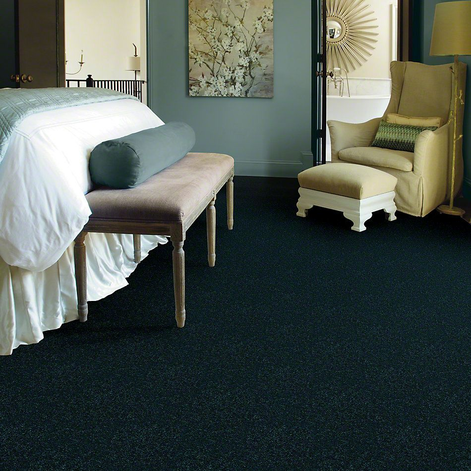 Shaw Floors Dyersburg Classic 15′ Polo 55301_E0948