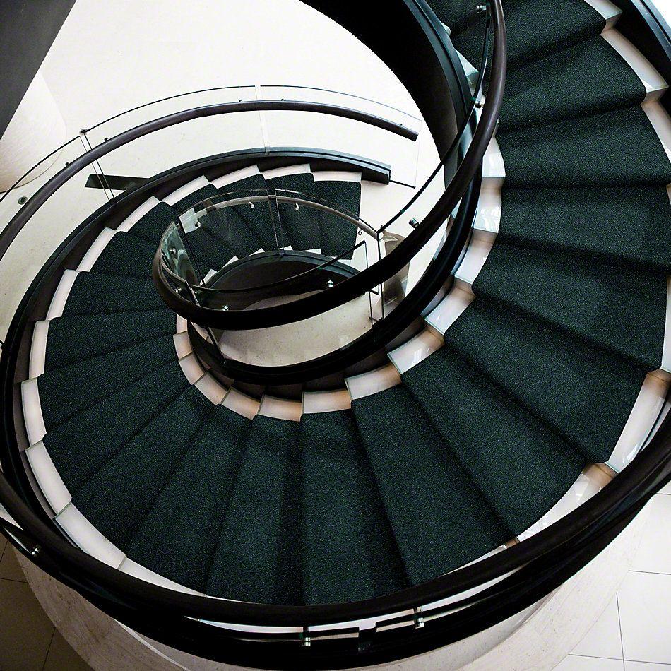 Shaw Floors Newbern Classic 12′ Polo 55301_E0949