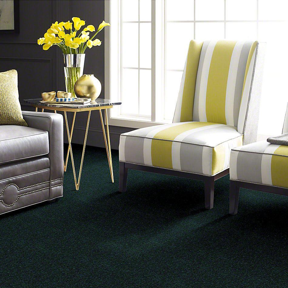 Shaw Floors Newbern Classic 15′ Polo 55301_E0950