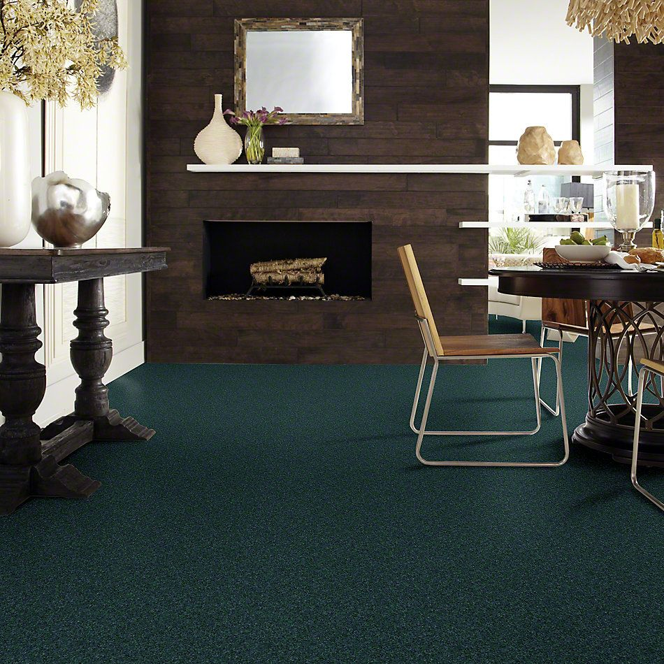 Shaw Floors Value Collections Newbern Classic 12′ Net Polo 55301_E9198