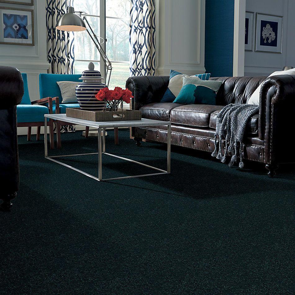 Shaw Floors Deerwood II 15 Polo 55301_LS056
