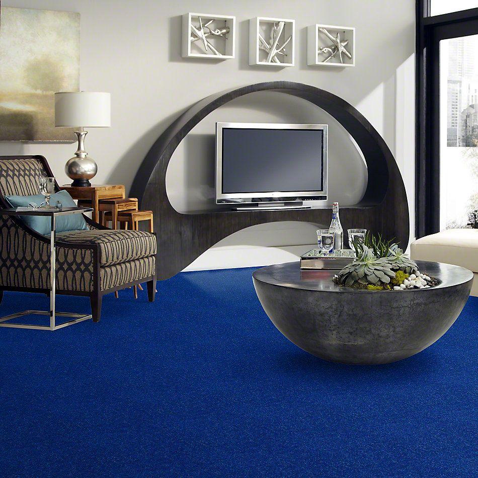 Shaw Floors Value Collections Newbern Classic 15′ Net Cobalt 55453_E9199