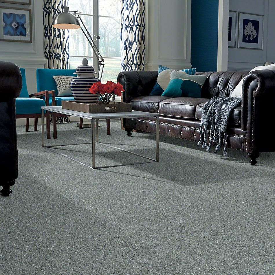 Shaw Floors Value Collections Dyersburg Classic 15′ Net Castle Grey 55501_E9193