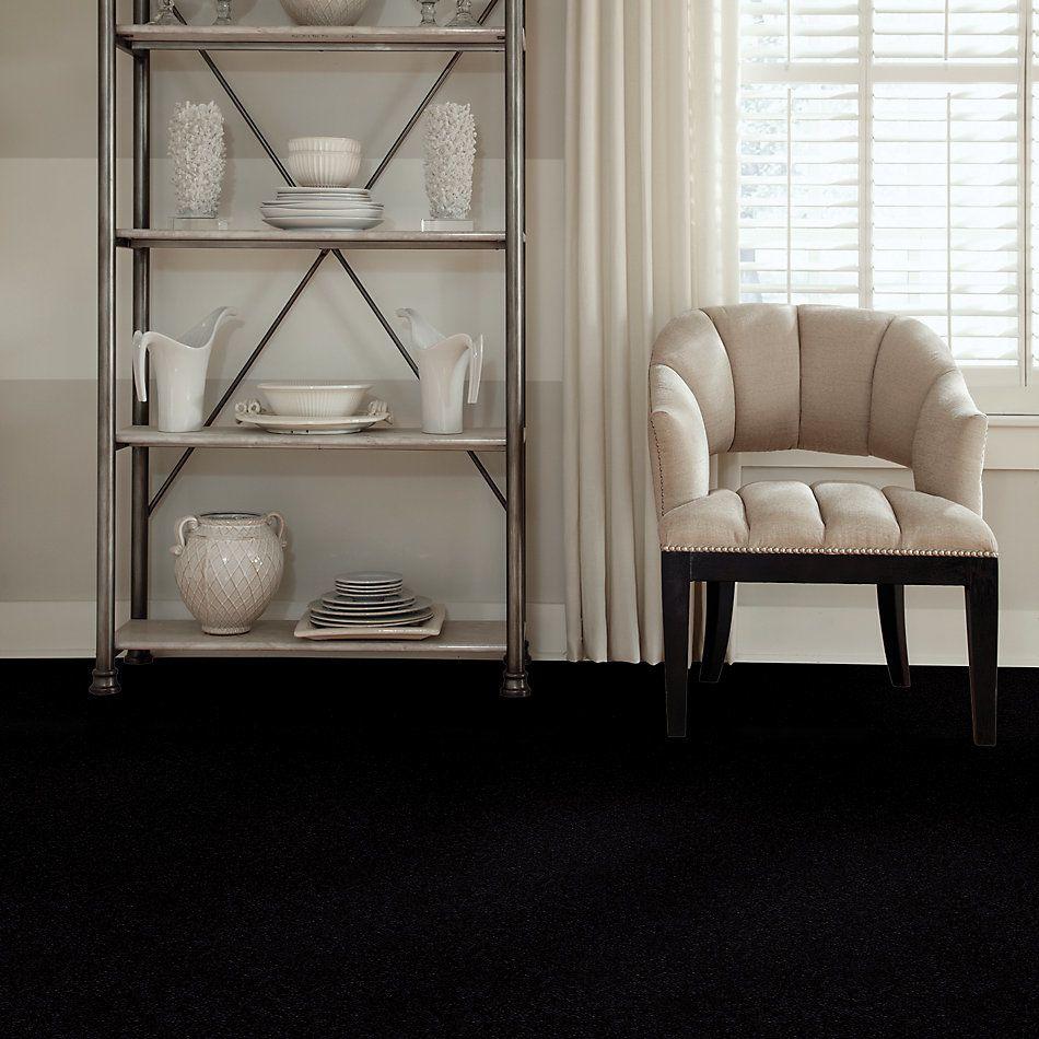 Shaw Floors Property Solutions Viper Ebony 55560_HF255