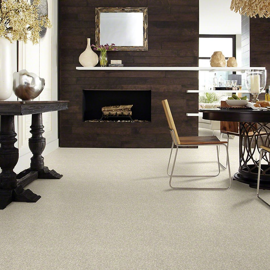 Shaw Floors Value Collections Dyersburg Classic 12 Net Dove 55700_E9206