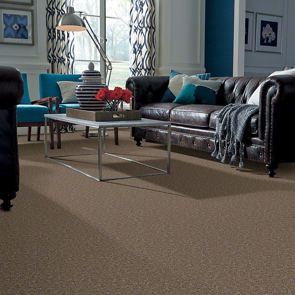 Shaw Floors Shaw Design Center Lacona 15′ Driftwood 55720_5C162
