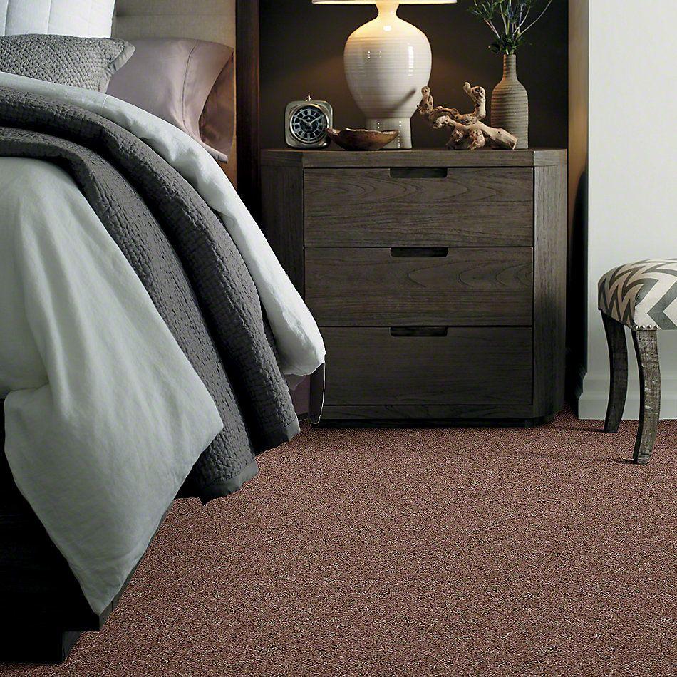 Shaw Floors Value Collections Newbern Classic 12′ Net Driftwood 55720_E9198