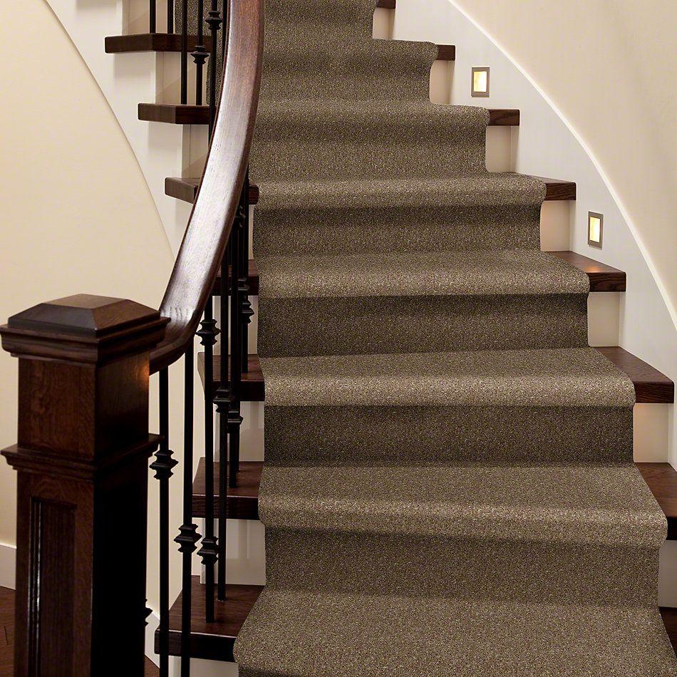 Shaw Floors Value Collections Newbern Classic 15′ Net Driftwood 55720_E9199