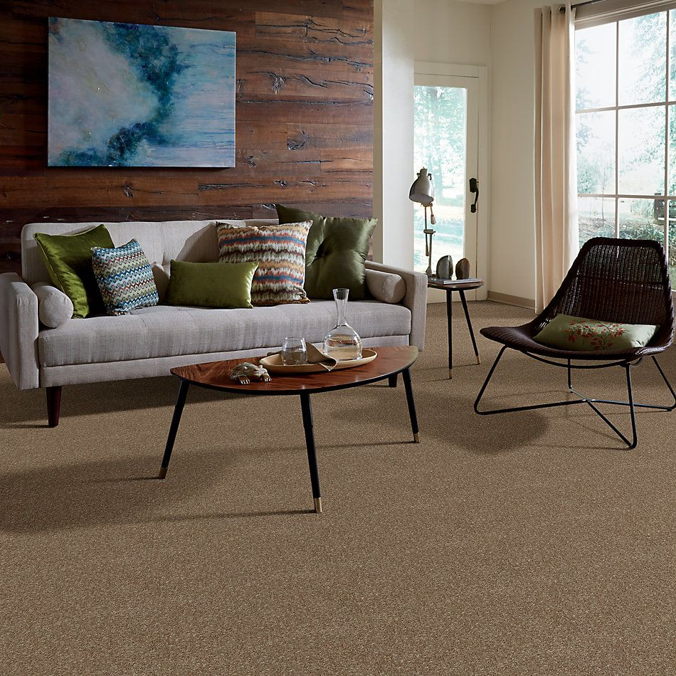 Shaw Floors Home Foundations Gold Modern Image 15′ Driftwood 55720_HGP20