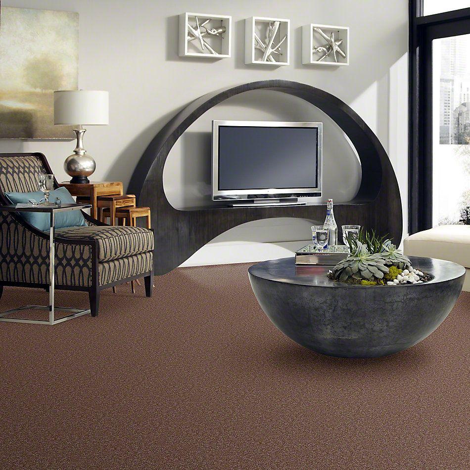 Shaw Floors Dyersburg Classic 15′ Candied Truffle 55750_E0948