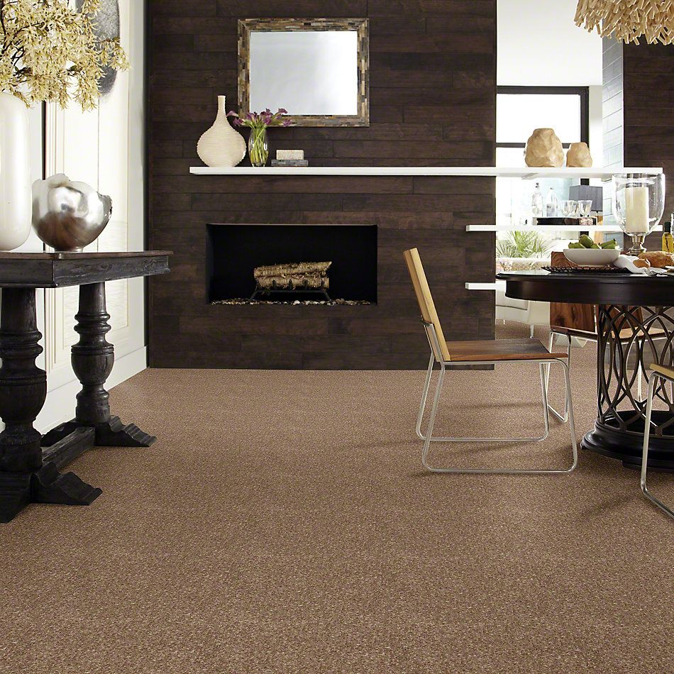 Shaw Floors Value Collections Dyersburg Classic 15′ Net Candied Truffle 55750_E9193