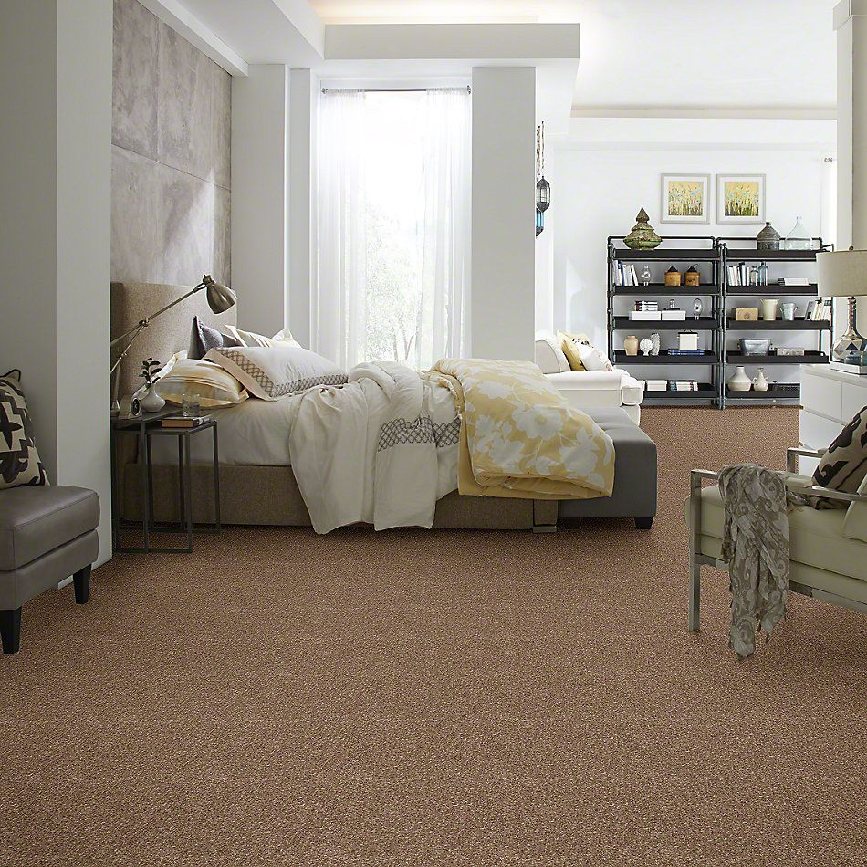 Shaw Floors Value Collections Newbern Classic 15′ Net Candied Truffle 55750_E9199