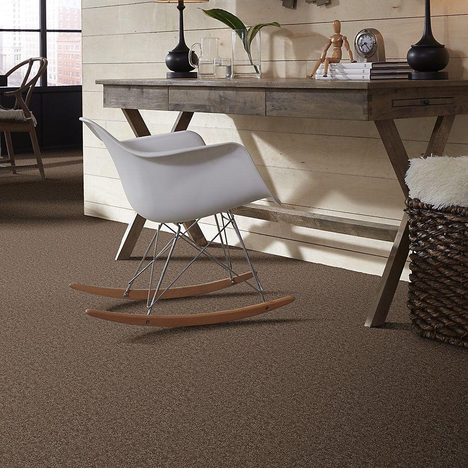 Shaw Floors Shaw Floor Studio Textured Story 15 Winter Wheat 55791_52B76