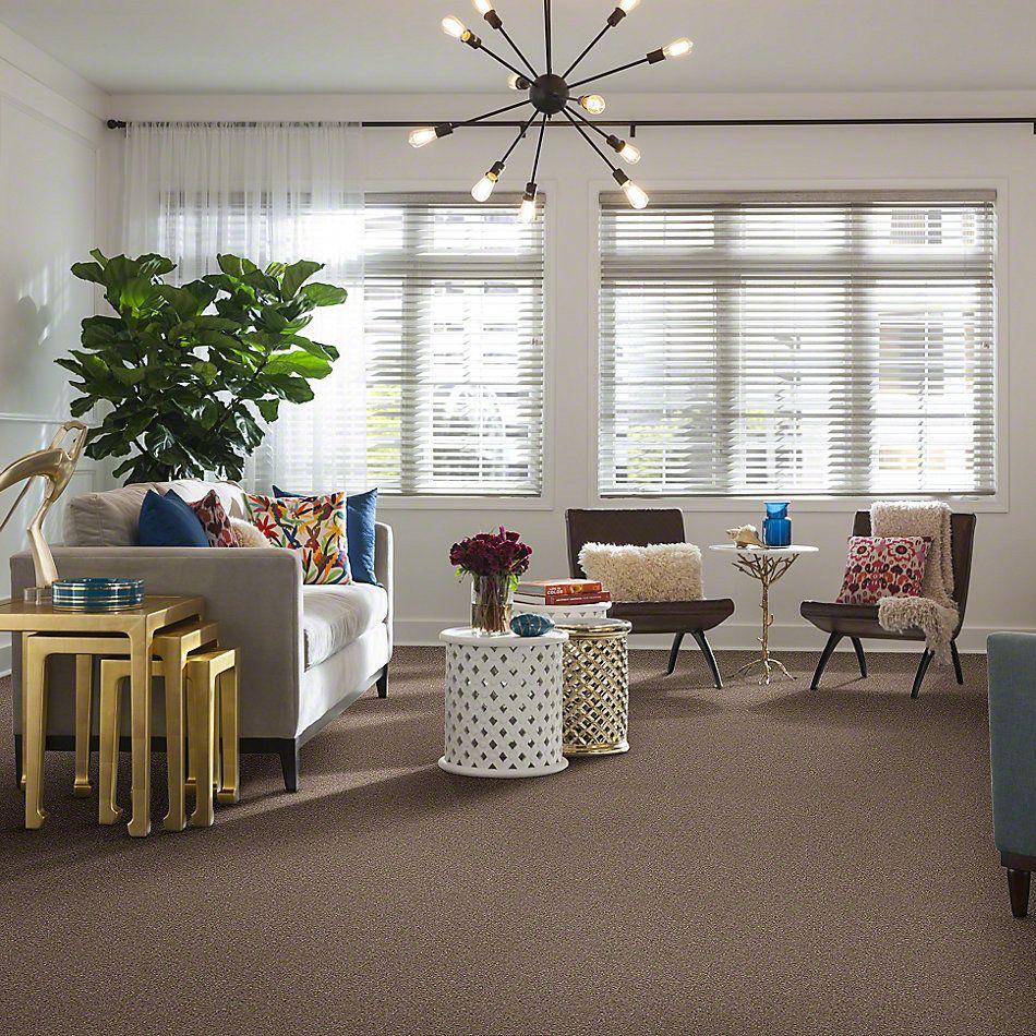 Shaw Floors Newbern Classic 12′ Taupe Mist 55792_E0949