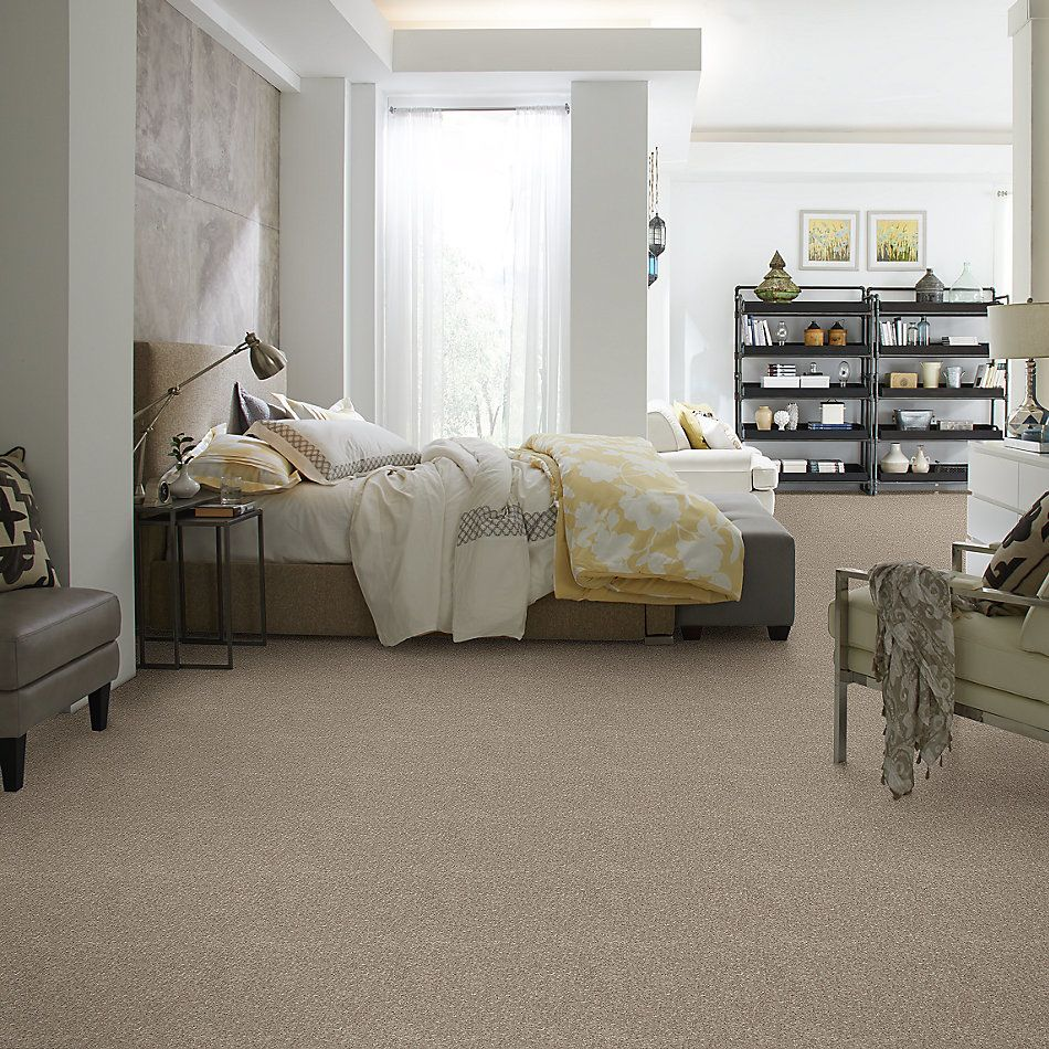Shaw Floors Value Collections Nantucket Summer 15′ Taupe Mist 55792_E9919