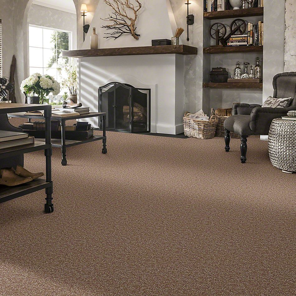 Shaw Floors Briceville Classic 15 Dusty Trail 55793_E0952
