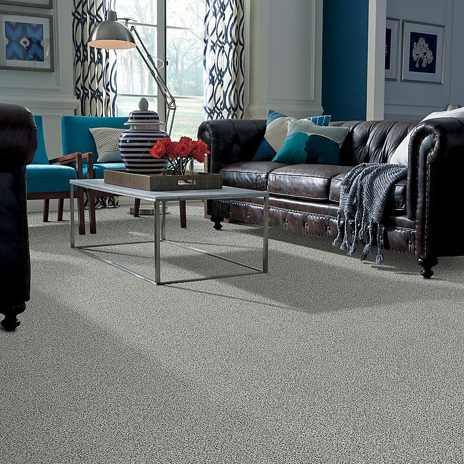 Shaw Floors Value Collections Fyc Ta II Dk Nat Net Cocktail Hour (a) 561A_5E025