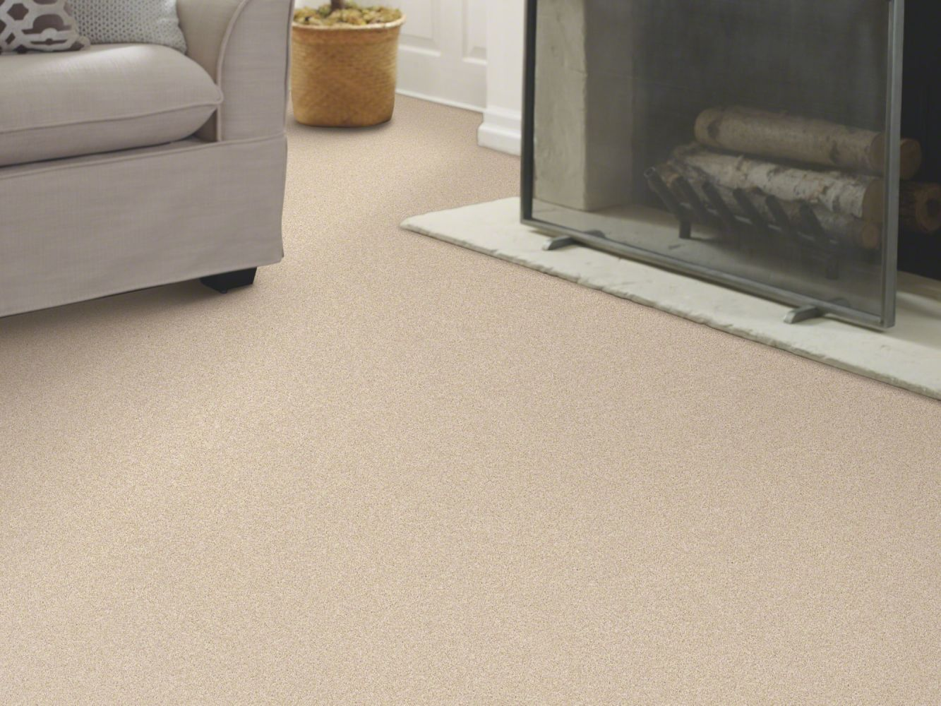 Shaw Floors Value Collections Take The Floor Texture II Net Biscotti 00131_5E067