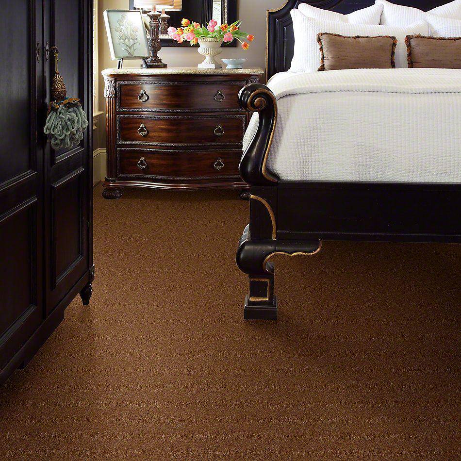 Shaw Floors Queen Matador Tobacco 60731_Q0060