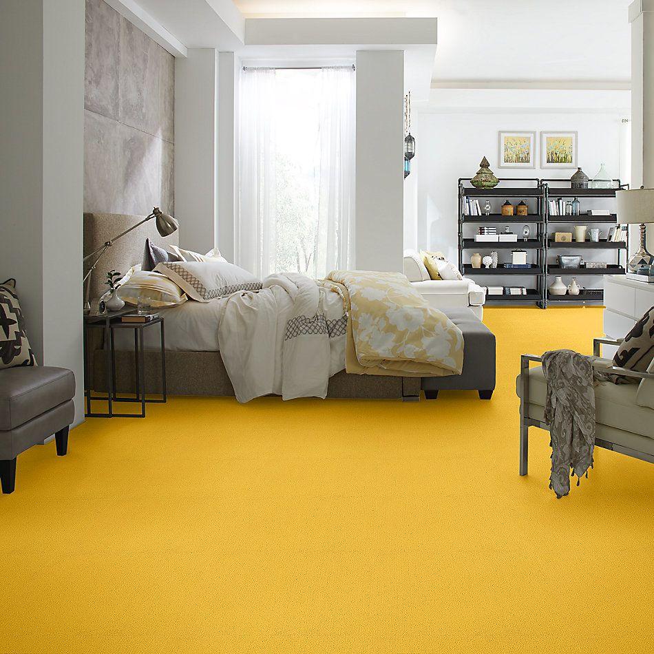 Philadelphia Commercial Color Accents Citrus 62201_54462