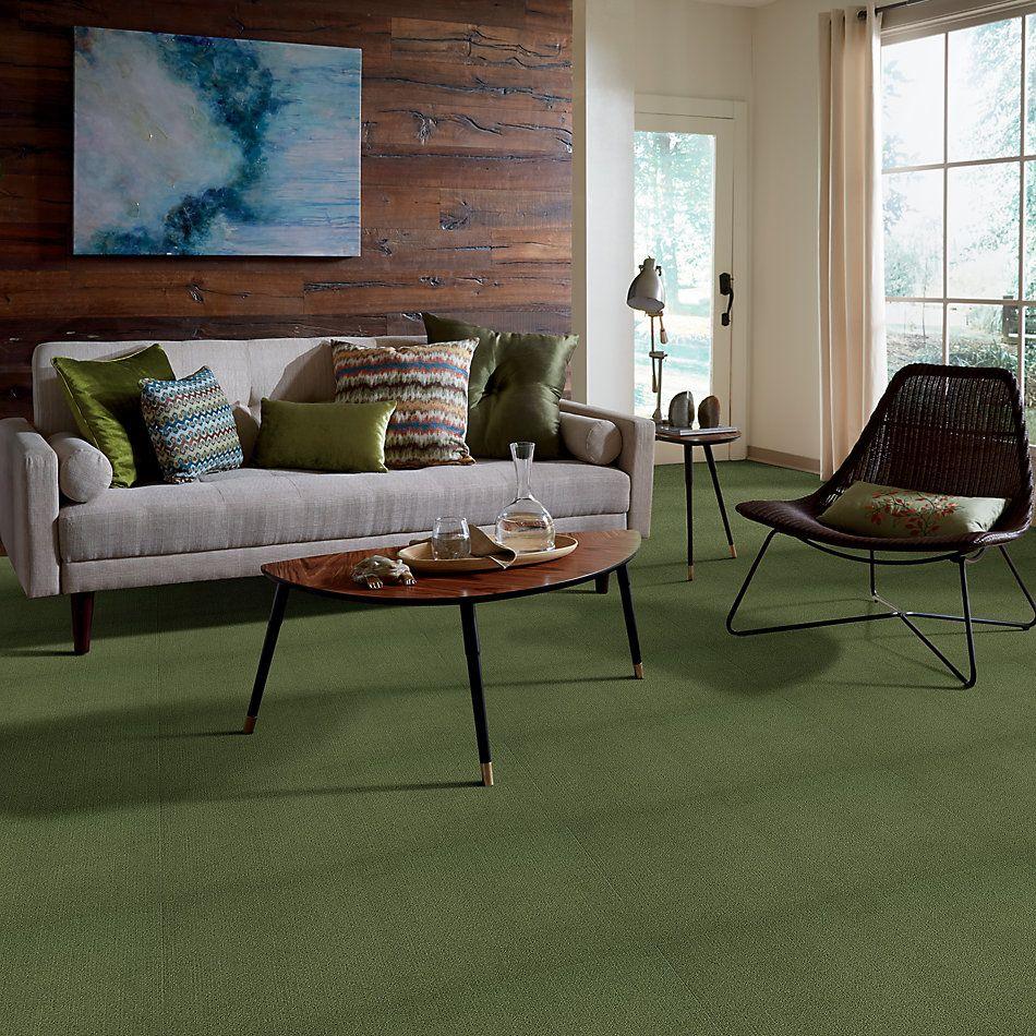 Philadelphia Commercial Color Accents Cactus 62370_54462