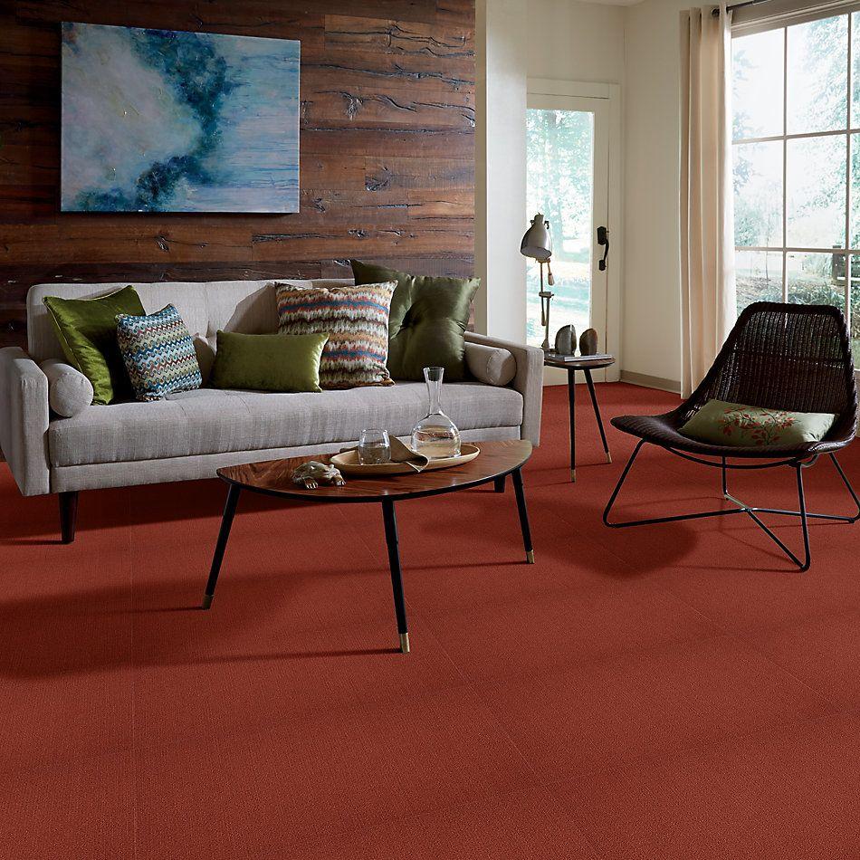 Philadelphia Commercial Color Accents Russet 62665_54462