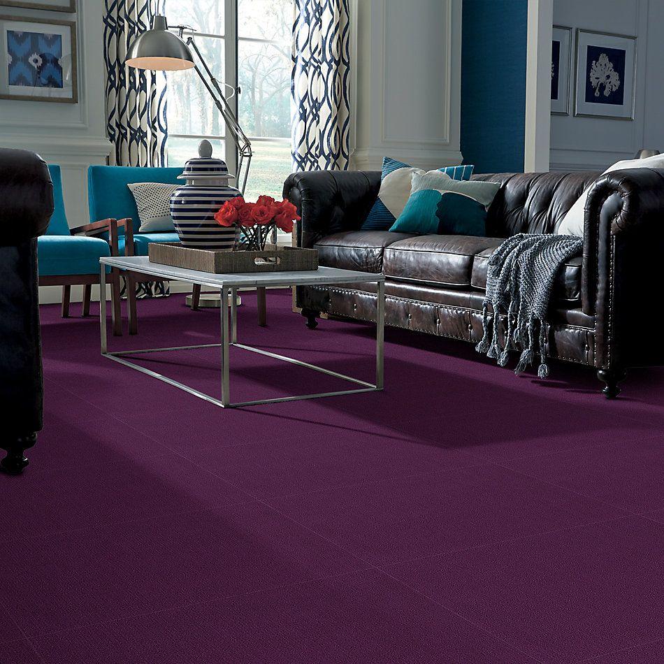 Philadelphia Commercial Color Accents Purple 62901_54462