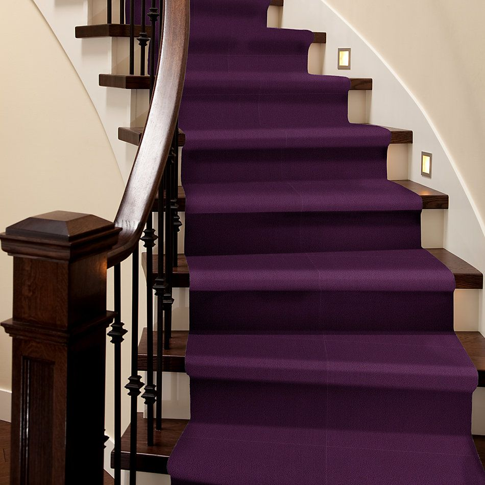 Philadelphia Commercial Color Accents Purple 62901_54462