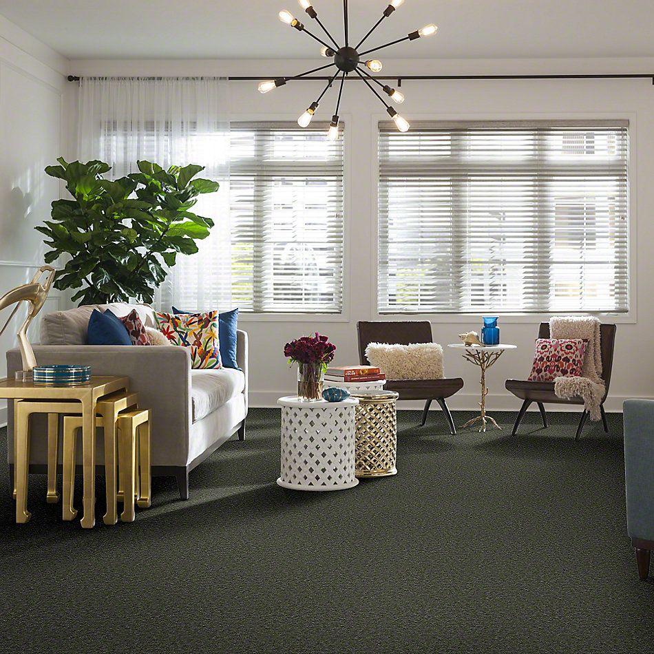 Shaw Floors Hawkeye Pineneedle 65320_51065