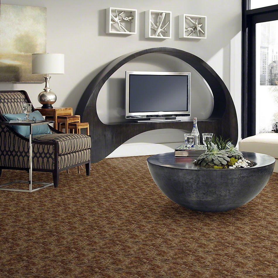 Shaw Floors Tenacious Greco Bronze 69754_51469