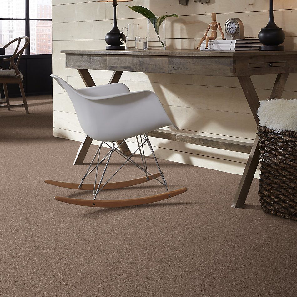 Shaw Floors Simply The Best Momentum II Net Canyon Buff 700S_5E097