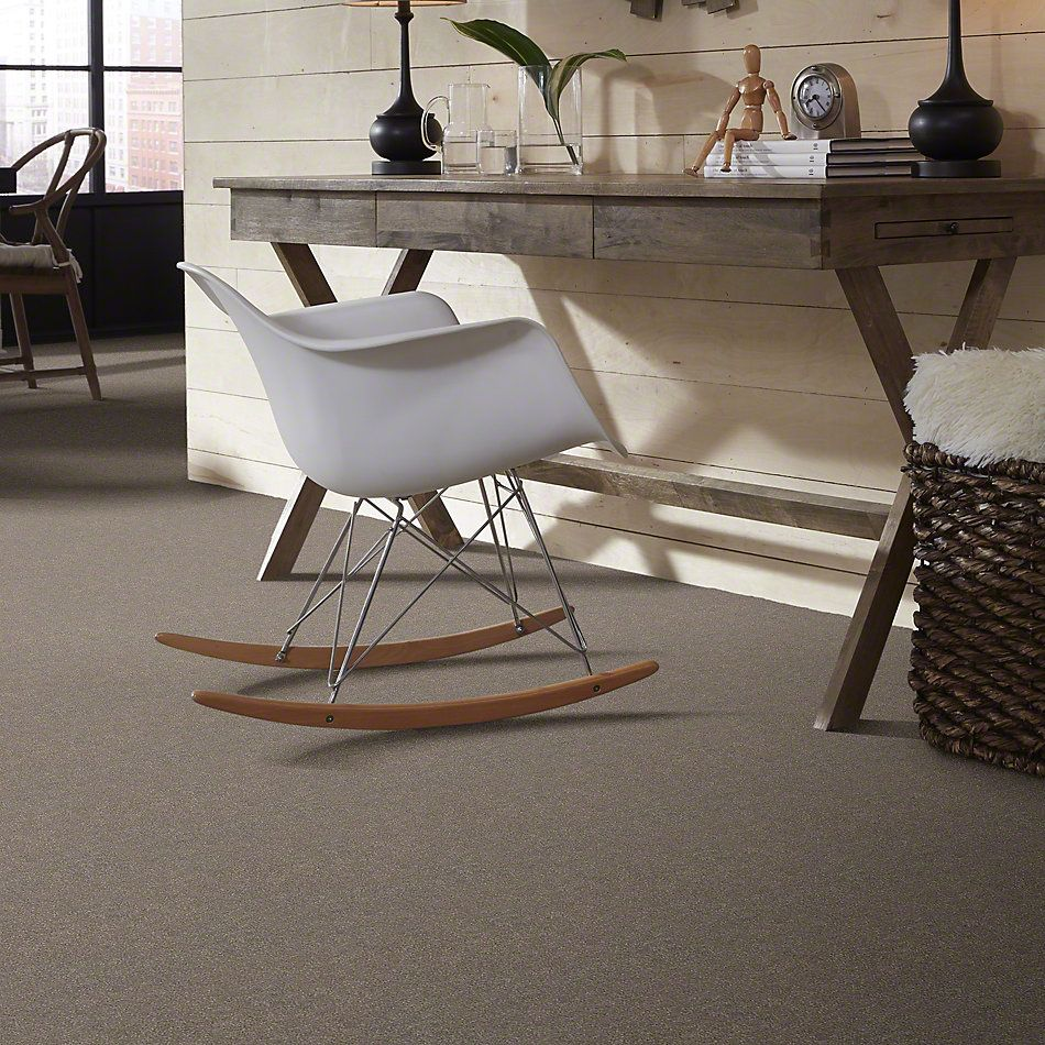 Shaw Floors Simply The Best Attainable Smooth Taupe 700S_E9965