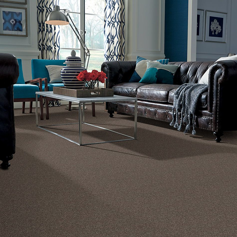 Shaw Floors Simply The Best Attainable Net Urban Loft 702S_5E094