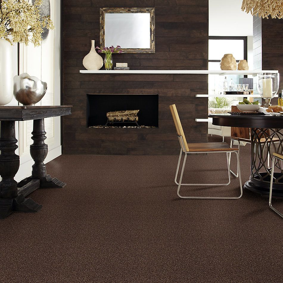 Shaw Floors SFA Fyc Tt I Net Chocolate Treat (t) 707T_5E021