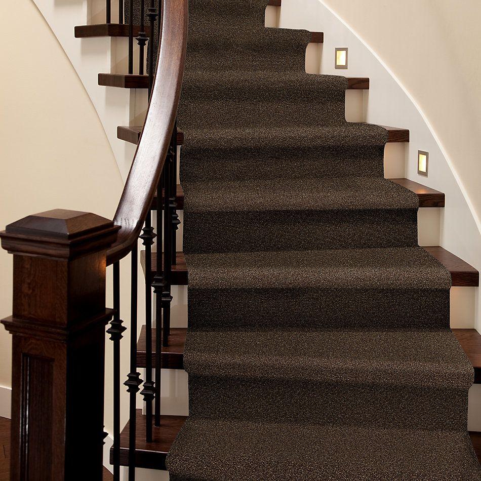 Shaw Floors SFA Fyc Tt II Net Chocolate Treat (t) 707T_5E022