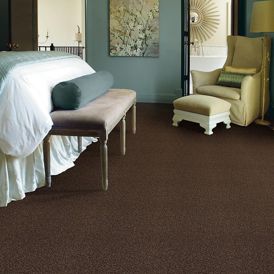 Shaw Floors SFA Fyc Tt Blue Net Chocolate Treat (t) 707T_5E023
