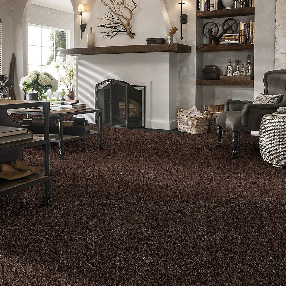 Shaw Floors SFA Find Your Comfort Tt I Chocolate Treat (t) 707T_EA817