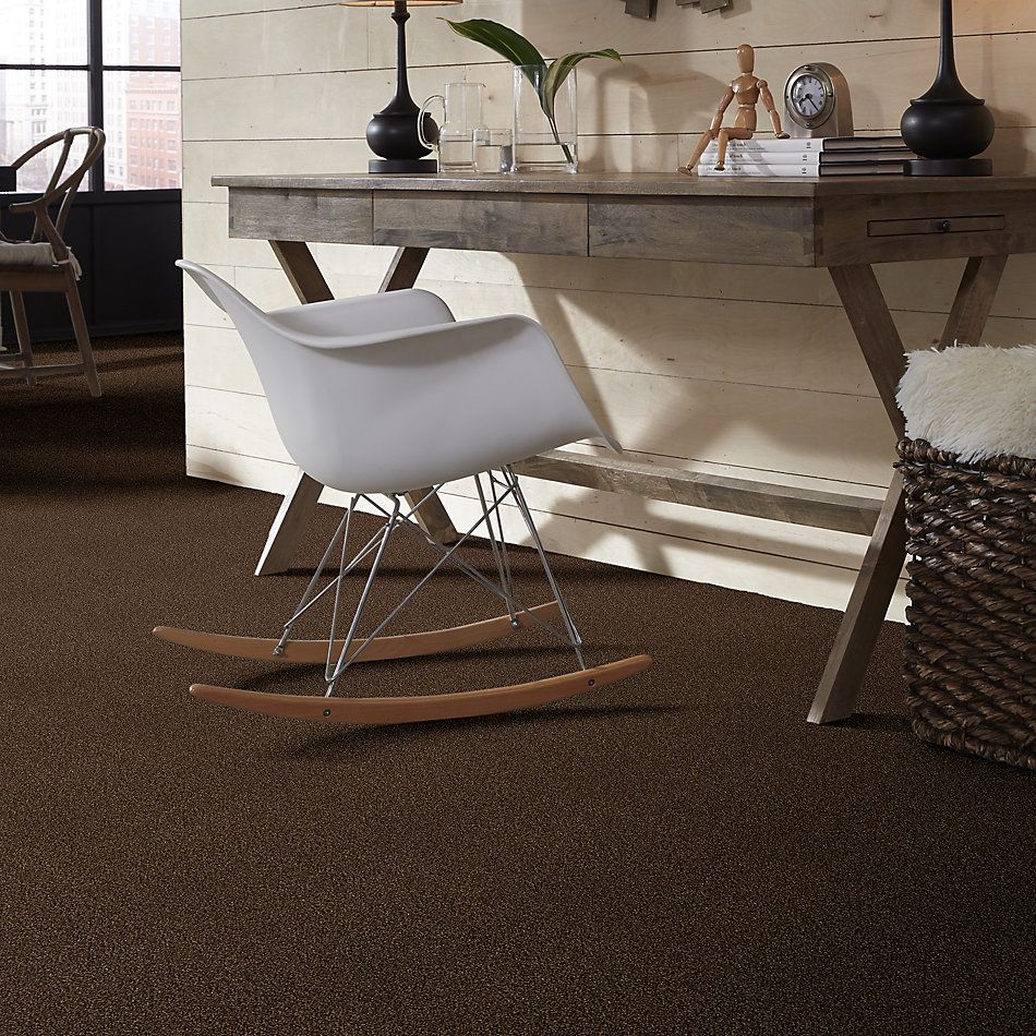 Shaw Floors SFA Find Your Comfort Tt II Chocolate Treat (t) 707T_EA818