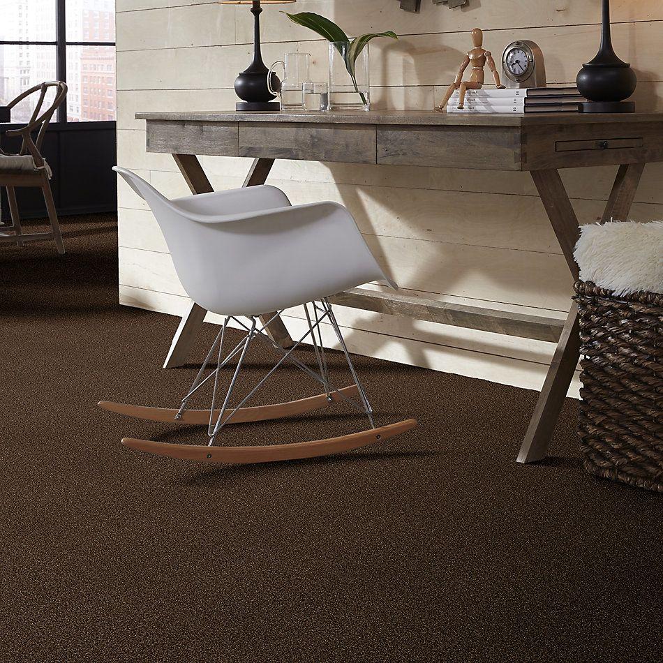 Shaw Floors SFA Find Your Comfort Tt II Chocolate Treat (t) 707T_EA818