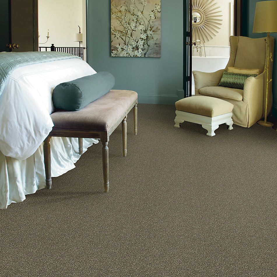 Shaw Floors Value Collections Attainable Solid Net Fox Hollow 722T_5E094