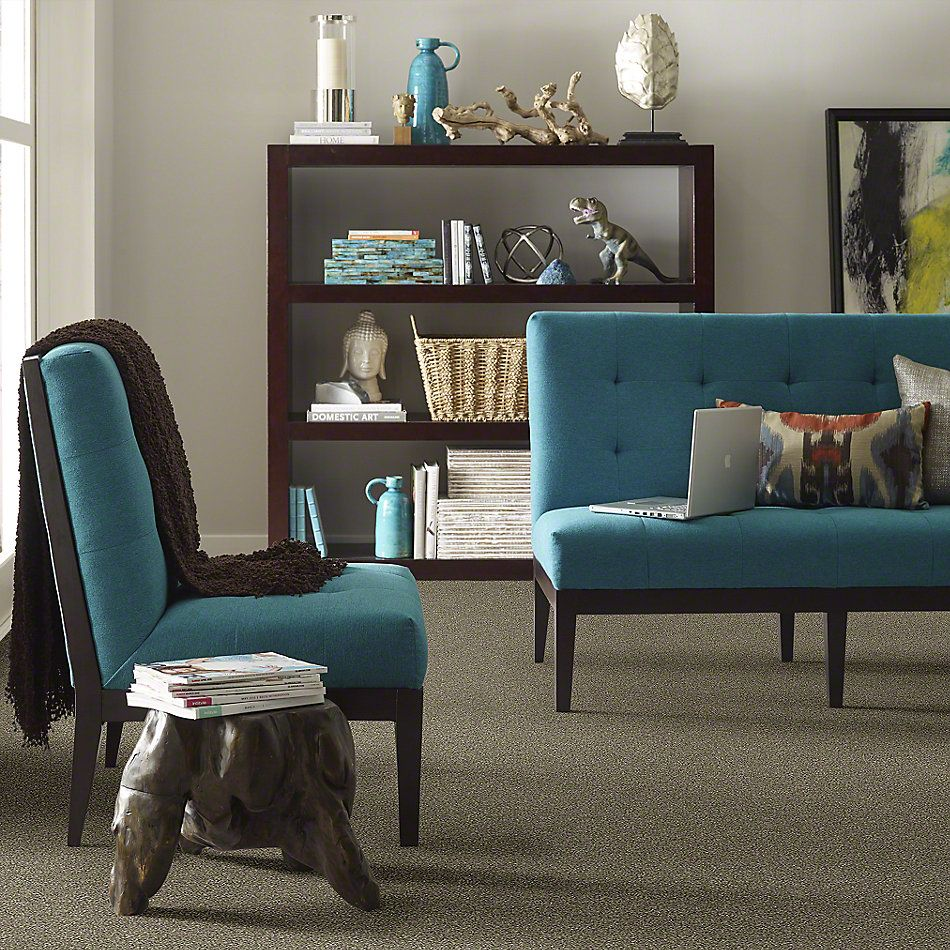Shaw Floors Simply The Best Attainable Fox Hollow 722T_E9965