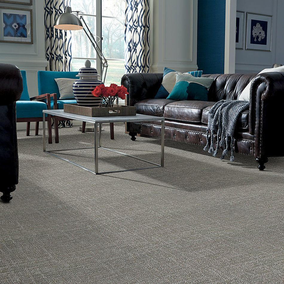 Shaw Floors Value Collections Creating Memories Net Back Patio 724P_5E027