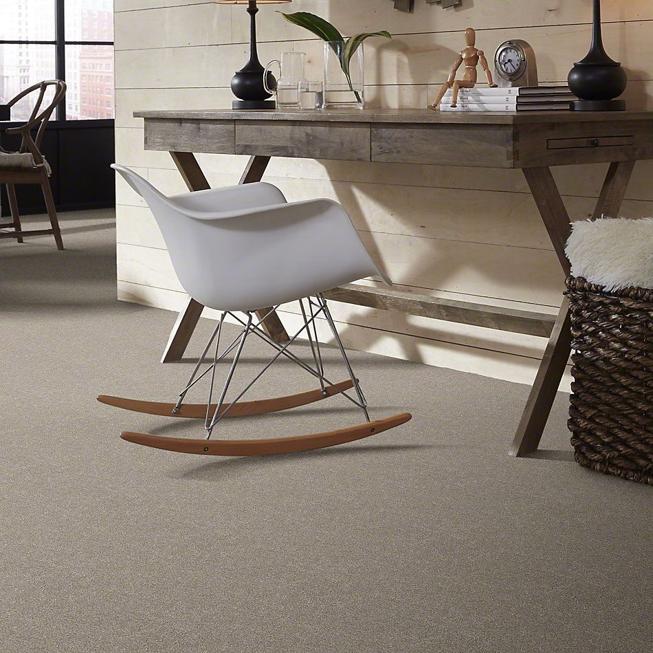 Shaw Floors SFA Find Your Comfort Ns I Back Patio (s) 724S_EA814