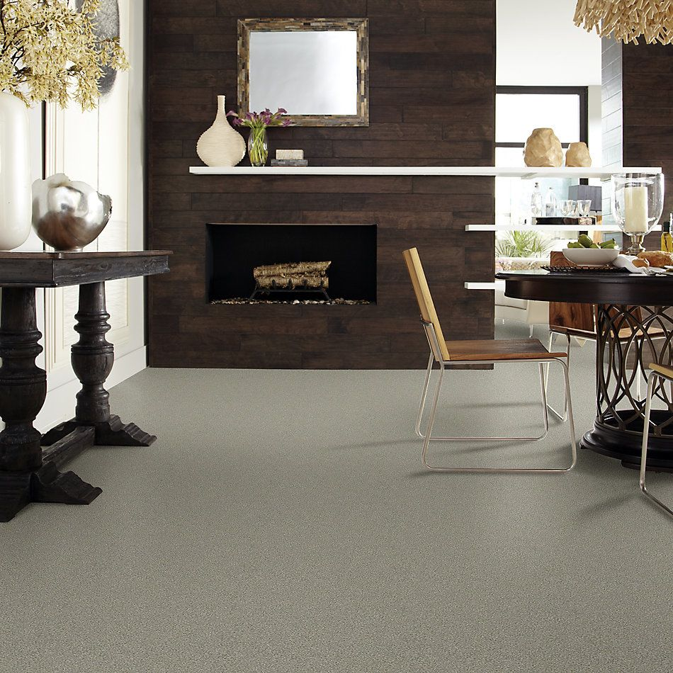 Shaw Floors Value Collections Momentum I Net Rockslide 740A_5E096